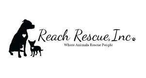 ReachRescue_Resize_Table